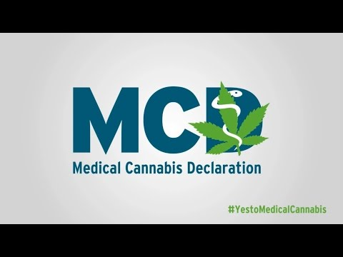 The latest output of the campaign is a video on the mechanism behind cannabis as medicine. Leading scientist from all over the world explain the extensive effect of cannabis on the human body's endocannabinoid system and how this effect can be used for medical purposes